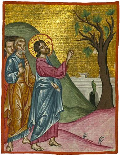 Jésus et le figuier stérile